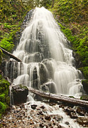 Jamie Pham Metal Prints - Magical Falls - Fairy Falls in the Columbia River Gorge Area of Oregon Metal Print by Jamie Pham