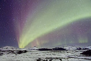 Borealis Photos - Magical Night by Evelina Kremsdorf