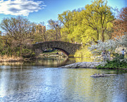 Vicki Jauron Metal Prints - Magical Spring in Central Park Metal Print by Vicki Jauron