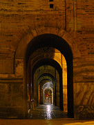 Archways Posters - Magnificent Arches Poster by Al Bourassa