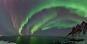 Frank Olsen - Magnificent Auroras