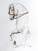 Horse Original Paintings - Magnificent by Janina  Suuronen