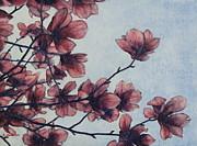 Magnolia Print by Andrew Danielsen