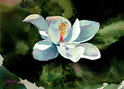 Jill Westbrook - Magnolia at Starwood Glen