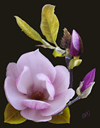 Sculptured Posters - Magnolia Poster by Ben and Raisa Gertsberg