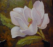 Barbara Haviland Framed Prints - Magnolia by Barbara Haviland Framed Print by Barbara Haviland