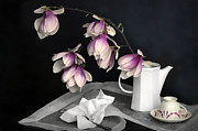 Still Life With Pitcher Digital Art Framed Prints - Magnolia Still Framed Print by Diana Angstadt