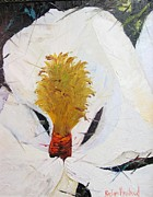 Barbara Haviland - Magnolia UP Close