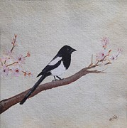 Magpies Paintings - Magpie On Cherryblossm Tree by Sheela Padmanabhan