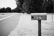 Mailboxes Framed Prints - Mailboxes On A Small Rural Road Florida Usa Framed Print by Joe Fox