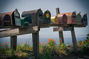 Mailboxes Framed Prints - Mailboxes Framed Print by Peter Verdnik