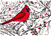 Cardinal Mixed Media Framed Prints - Maine Cardinal Framed Print by Beverly Farrington