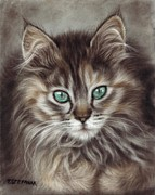 Maine Pastels Framed Prints - Maine coon Framed Print by Tobiasz Stefaniak