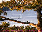 New England. Pyrography Prints - Maine lobstering Print by Susan Russo