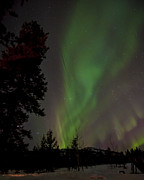 D700 Art - Majestic Aurora Borealis by Thomas Detert
