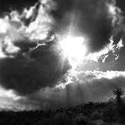 Edward Pollick - Majestic Desert Sky