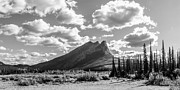 Monochrome Framed Prints - Majestic Drive Framed Print by Chad Dutson
