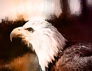 Marilyn Giannuzzi - Majestic Eagle