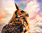 Jai Johnson - Majestic Great Horned Owl