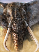 Tusk Painting Posters - Majestic Indeed 1 Poster by Reggie Duffie