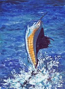 Barb Capeletti - Majestic Sailfish
