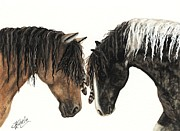 Mustang Art Framed Prints - Majestic Series 77 Framed Print by AmyLyn Bihrle