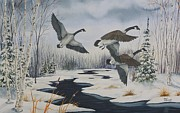 Geese Paintings - Majestic Take-Off by Gary McDonnell