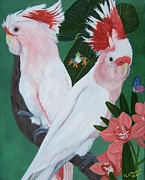 Cockatoo Painting Framed Prints - Major Mitchell Cockatoos Framed Print by Debbie LaFrance