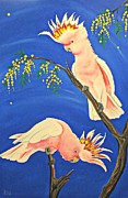 Parrot Paintings - Major Mitchells in Acacia  by Una  Miller