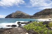 Featured Metal Prints - Makapuu Beach Metal Print by Brandon Tabiolo