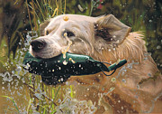 Working Dogs Originals - Making a Splash by Karie-ann Cooper