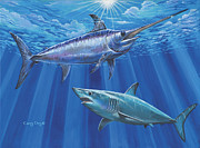 Striped Marlin Framed Prints - Mako Sword Off0024 Framed Print by Carey Chen