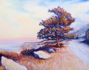 Frederick Painting Originals - Malaga Cove Pine by Frederick   Luff  Gallery