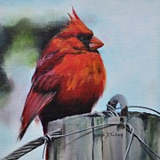 Donna Tuten - Male Cardinal on Post