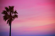 Low Angle View Originals - Malibu Dramatic Sky by Albert Valles