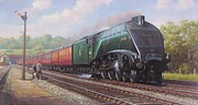 Railway Paintings - Mallard on the Elizabethan. by Mike  Jeffries
