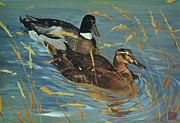 Mallard Ducks Paintings - Mallards Over Gold by Sally Buffington
