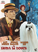 Maltese Dog Posters - Maltese Art - Irma la Douce Movie Poster Poster by Sandra Sij