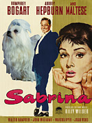 Maltese Dog Posters - Maltese Art - Sabrina Movie Poster Poster by Sandra Sij