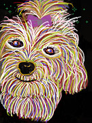 Maltese Dog Posters - Maltese Art Poster by Sheri Dean