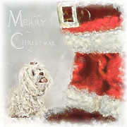 Snow Dog Mixed Media Posters - Maltese Merry Christmas Poster by Andrea Auletta