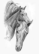 Horses Drawings - Mama and Baby Horse by Suzanne Schaefer