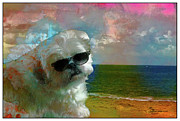 Shihtzu Posters - Mama Dont Let Your Dogs Grow Up to Be Beach Bums  Poster by EricaMaxine  Price