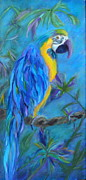 Macaw Painting Framed Prints - Mambo Framed Print by Lynn Rattray
