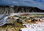 Hot Pyrography Prints - Mammoth Hot Springs Print by Robert Woodward