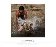 Mindia Midelashvili - Man and Buffalo in water