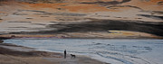 Tranquility Painting Originals - Man and Dog on the Beach by Ian Donley