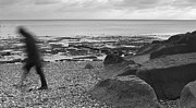 Seagull Digital Art Metal Prints - Man Walking Along Pebble Beach - Black and White Metal Print by Natalie Kinnear