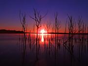 Manasquan Reservoir Sunrise Print by Raymond Salani III