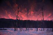 Raymond Salani III - Manasquan Reservoir Sunset